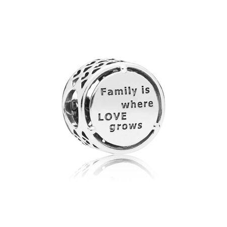 Charm Racines familiales
