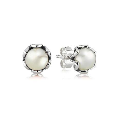 Cultured Elegance Stud Earrings, White Pearl