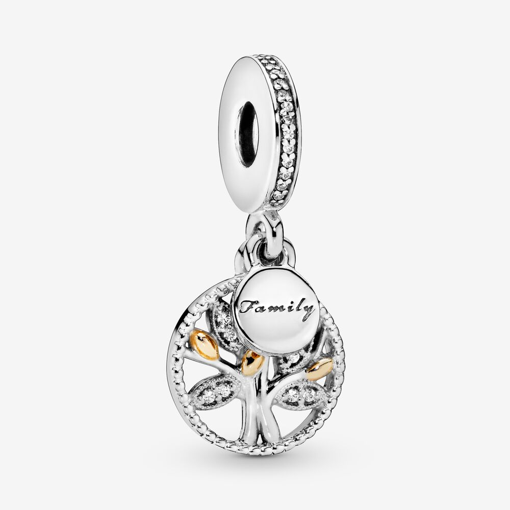 Family Heritage Dangle Charm with Cubic Zirconia | Two-tone ...