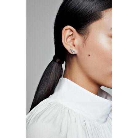 Curved Grains Earrings
