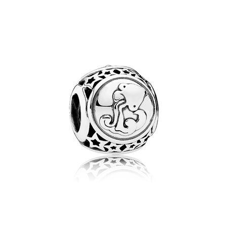 Aquarius Star Sign, Sterling silver - PANDORA - #791934
