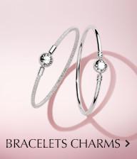 Bracelets Charms