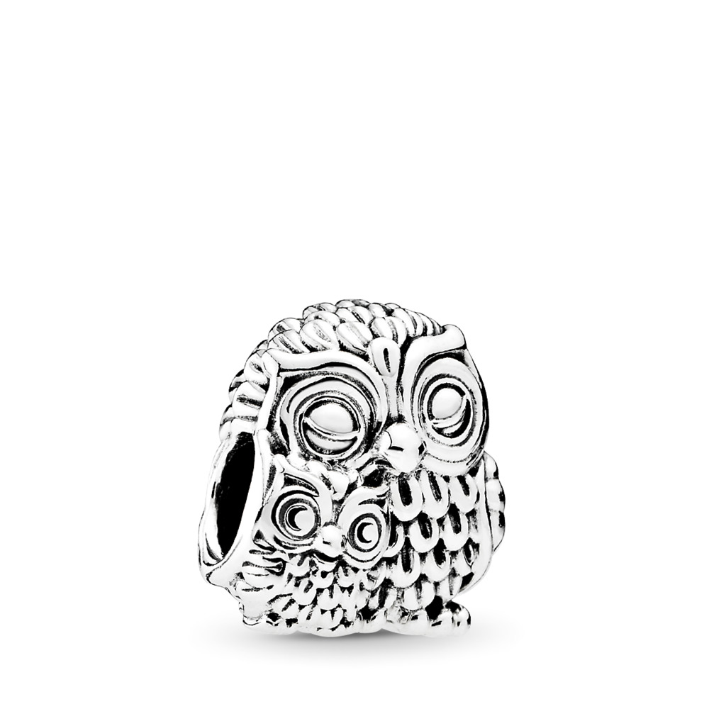 Charming Owls, Sterling silver - PANDORA - #791966