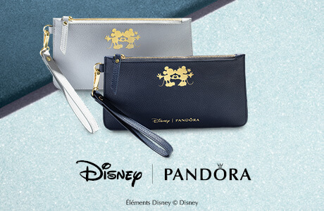 Disney Offer
