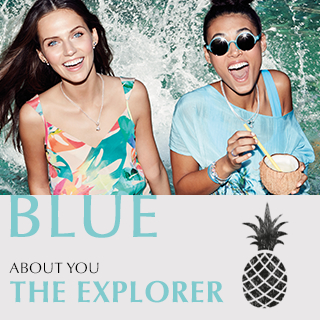 Blue. About you. THE EXPLORER.
