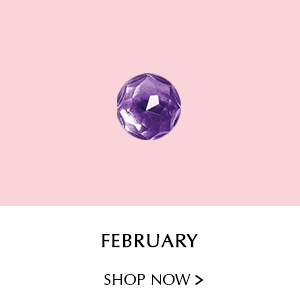 February. Shop Now.